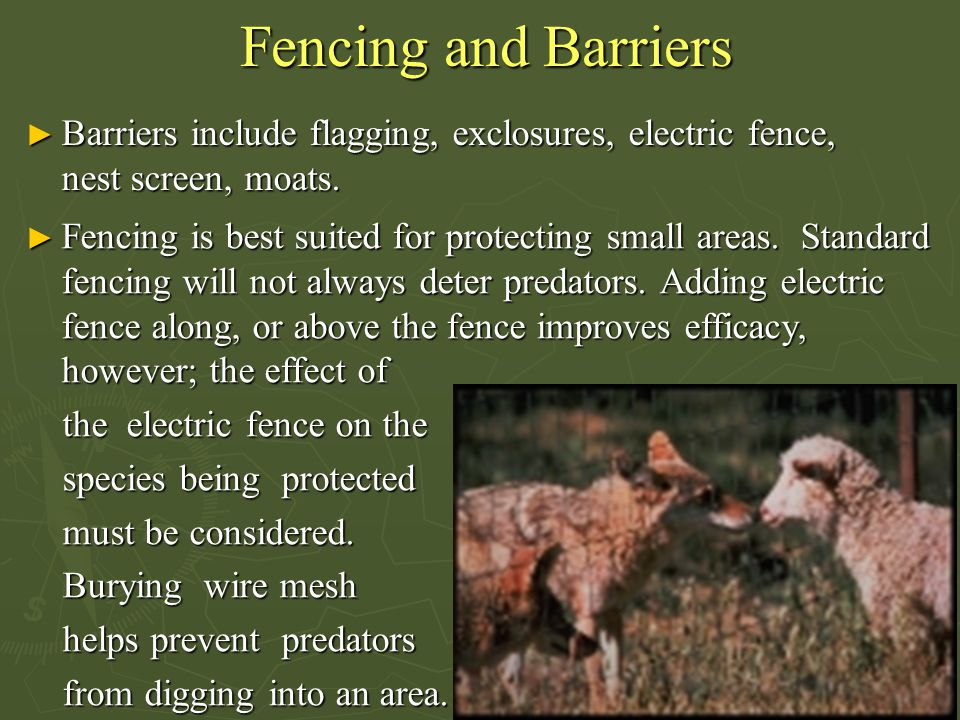 Fencing and Barriers Barriers include flagging, exclosures, electric fence, nest screen, moats.