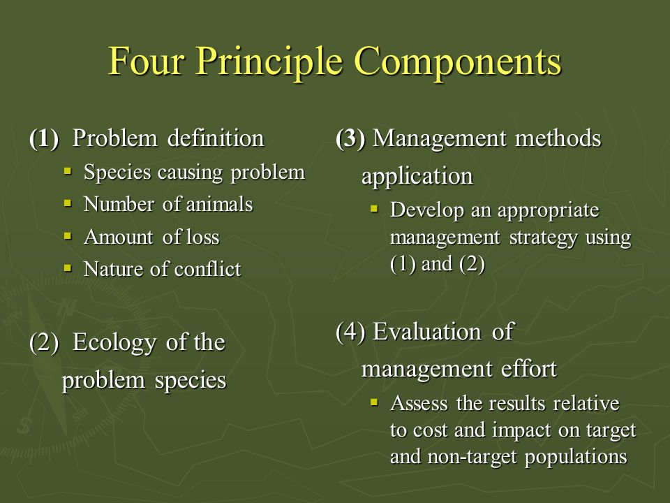 Four Principle Components
