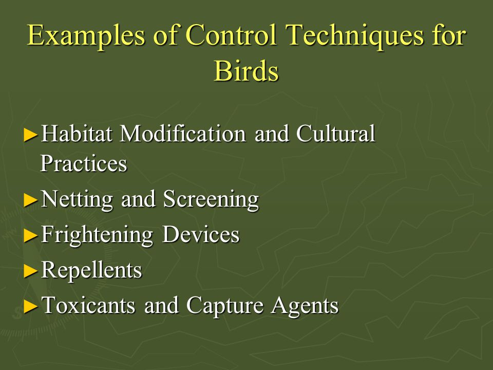 Examples of Control Techniques for Birds