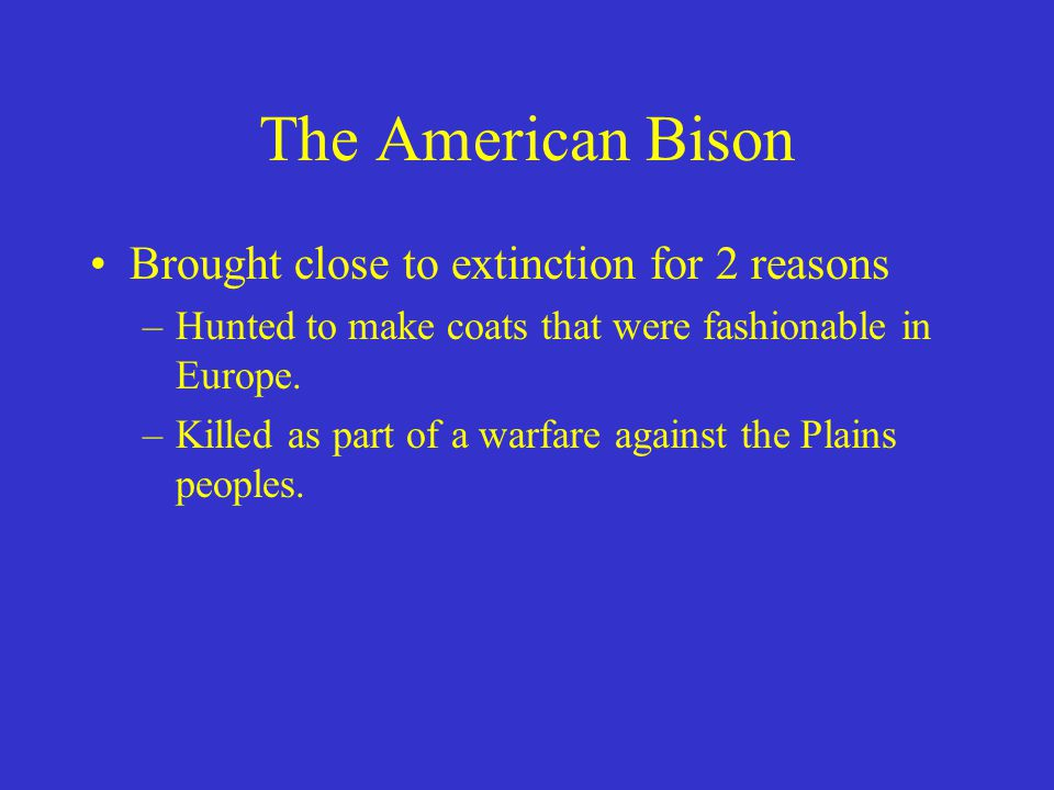 The American Bison Brought close to extinction for 2 reasons