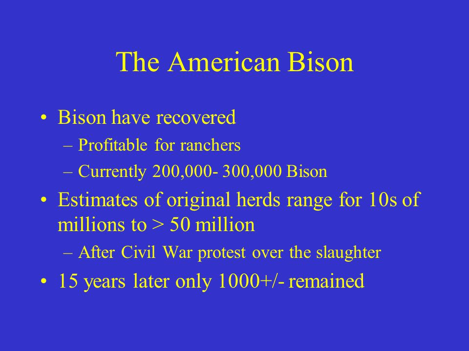 The American Bison Bison have recovered