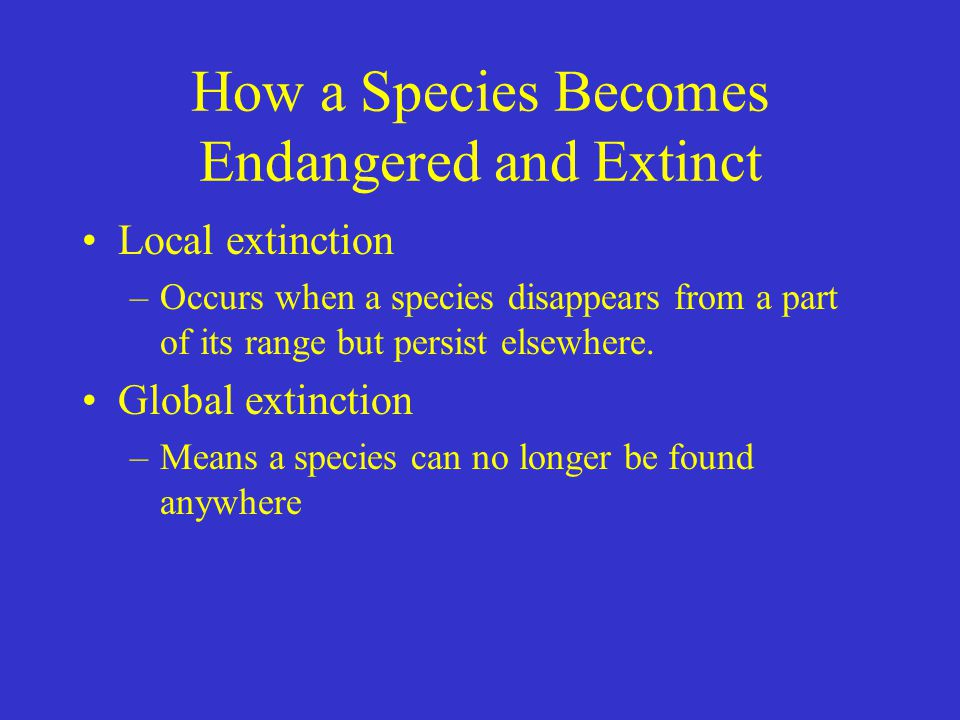How a Species Becomes Endangered and Extinct