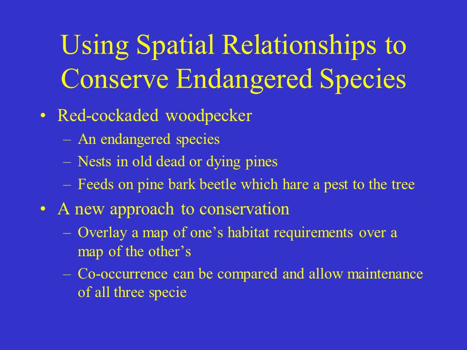 Using Spatial Relationships to Conserve Endangered Species