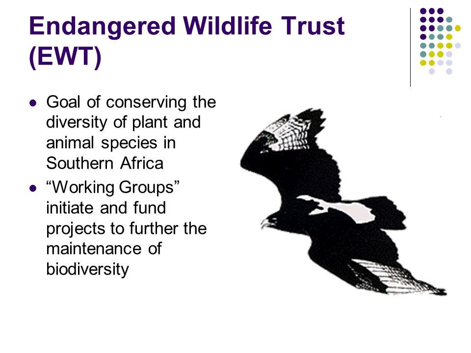 Endangered Wildlife Trust (EWT)