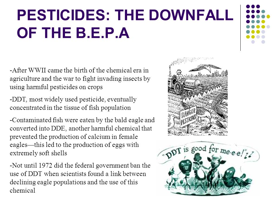 PESTICIDES: THE DOWNFALL OF THE B.E.P.A