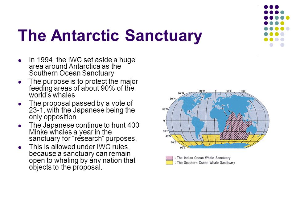 The Antarctic Sanctuary