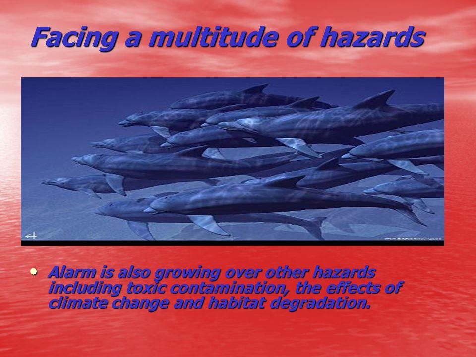 Facing a multitude of hazards