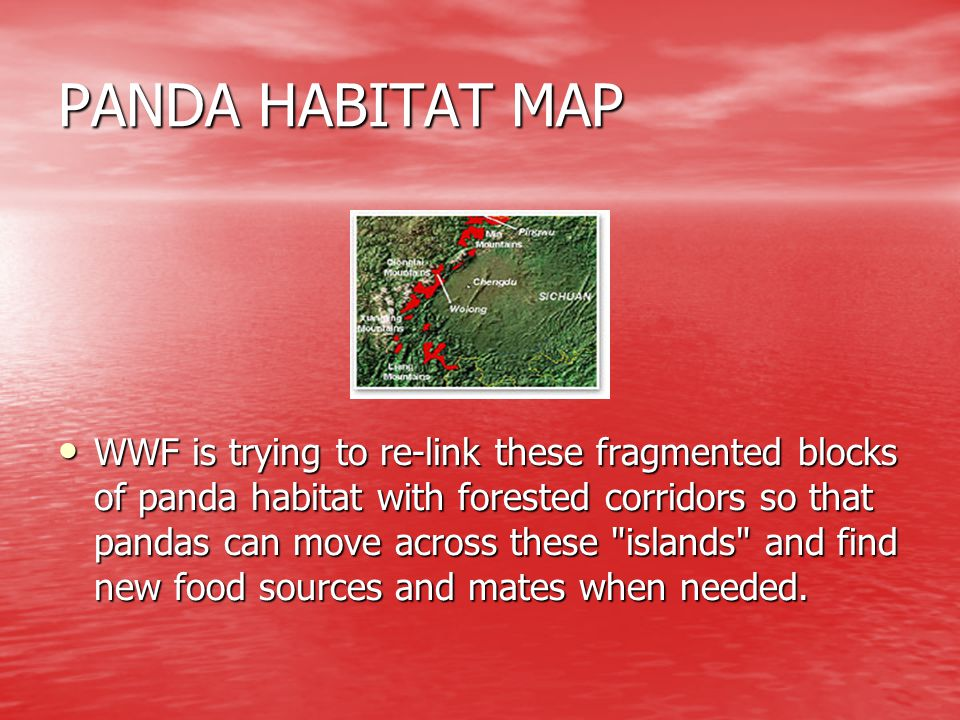 PANDA HABITAT MAP