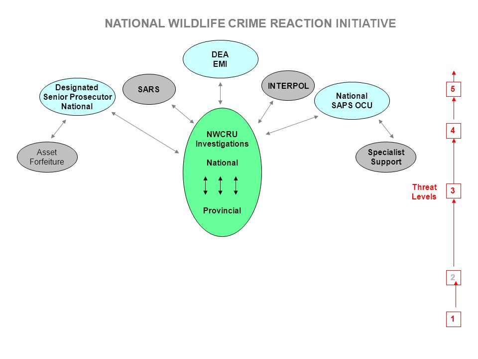 NATIONAL WILDLIFE CRIME REACTION