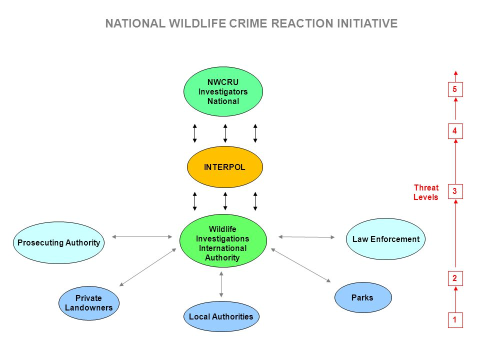 Prosecuting Authority Wildlife Investigations