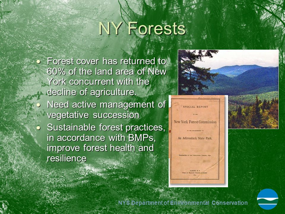 NY Forests Forest cover has returned to 60% of the land area of New York concurrent with the decline of agriculture.