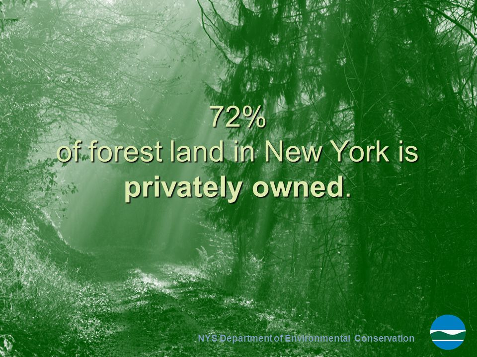 72% of forest land in New York is privately owned.