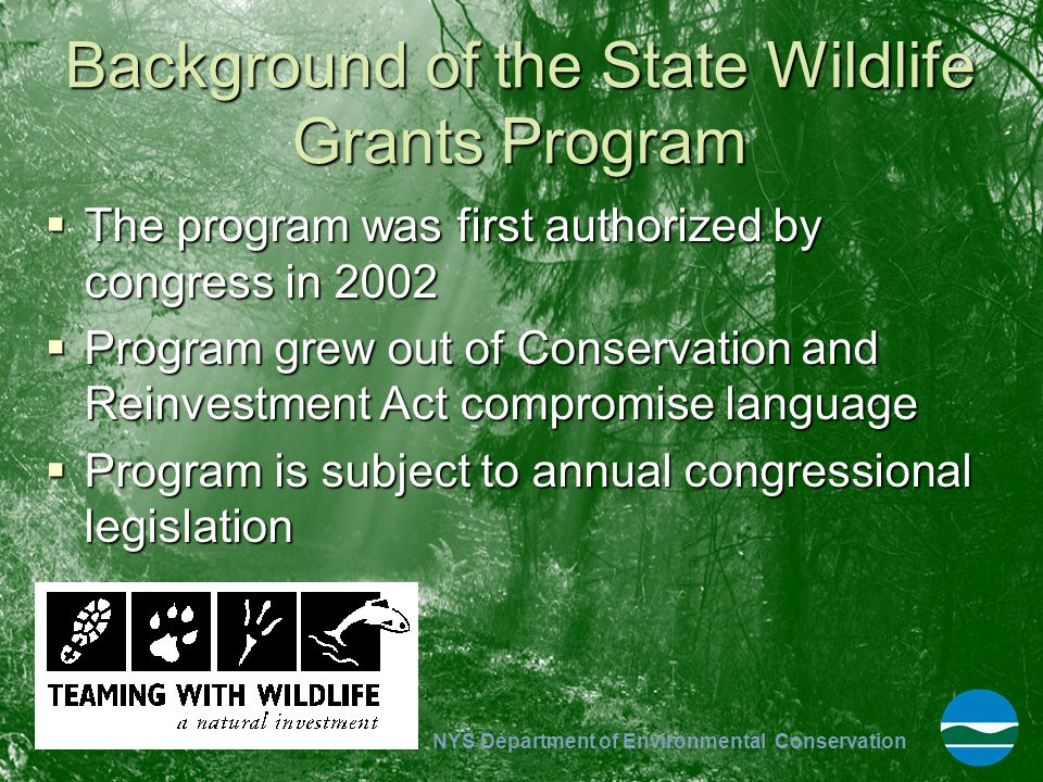 Background of the State Wildlife Grants Program