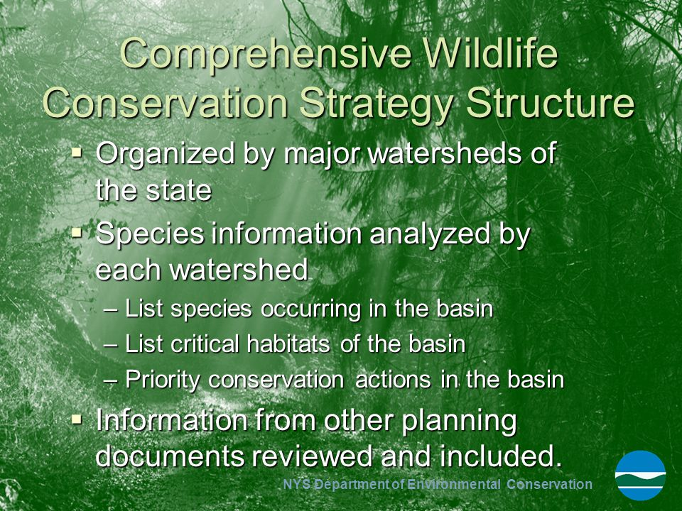 Comprehensive Wildlife Conservation Strategy Structure
