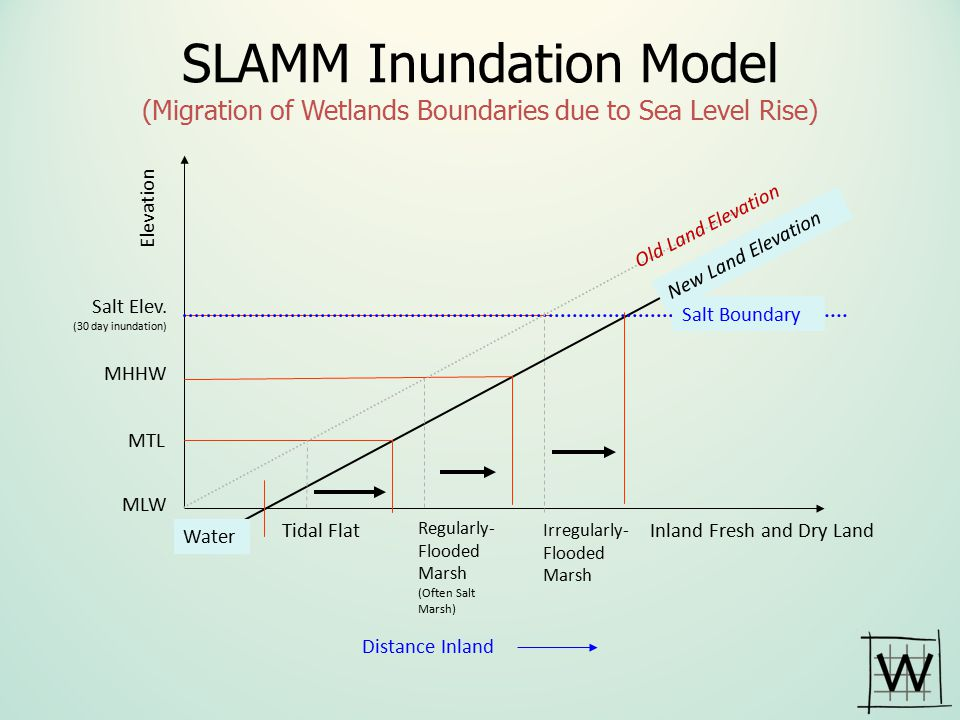 SLAMM Inundation Model (Migration of Wetlands Boundaries due to Sea Level Rise)
