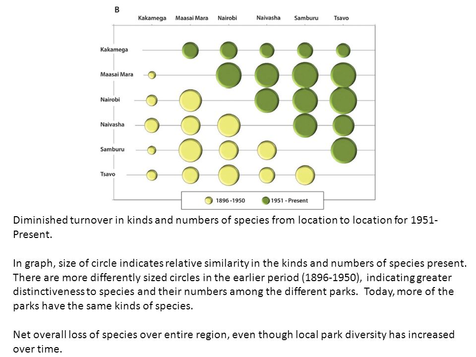 Diminished turnover in kinds and numbers of species from location to location for 1951-Present. In graph, size of circle indicates relative similarity in the kinds and numbers of species present. There are more differently sized circles in the earlier period (1896-1950), indicating greater distinctiveness to species and their numbers among the different parks. Today, more of the parks have the same kinds of species.