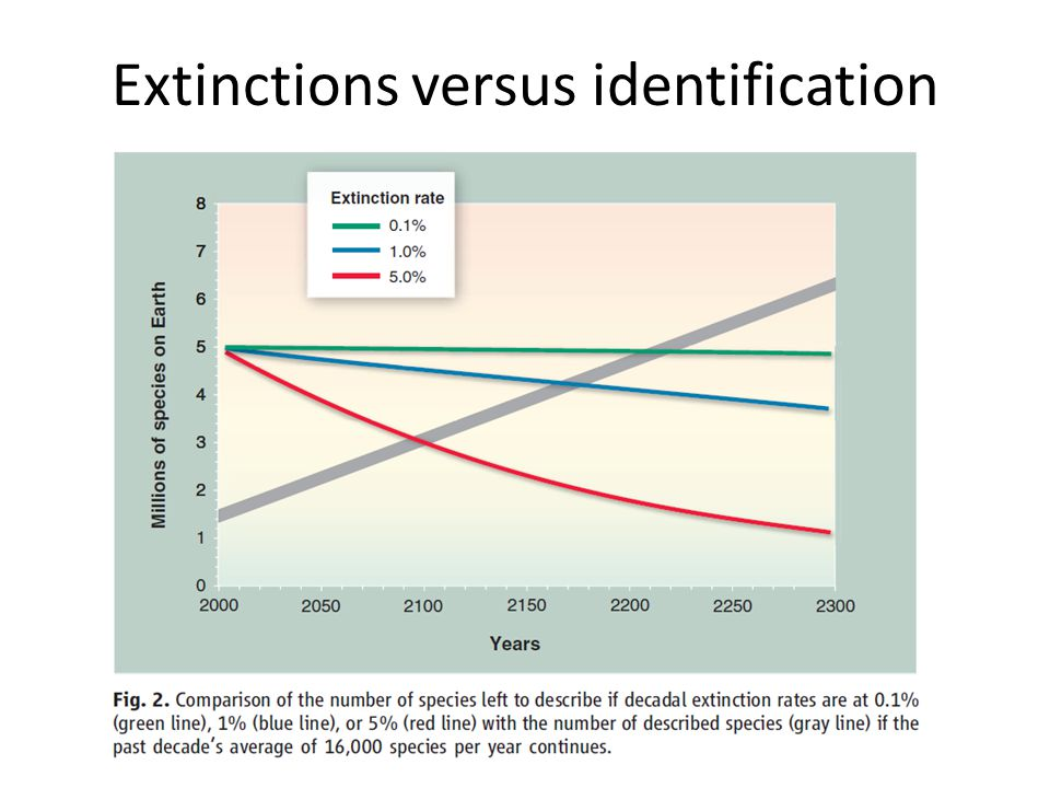 Extinctions versus identification