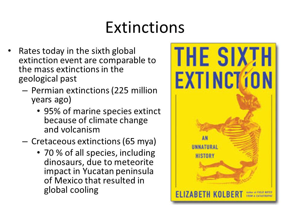 Extinctions Rates today in the sixth global extinction event are comparable to the mass extinctions in the geological past.