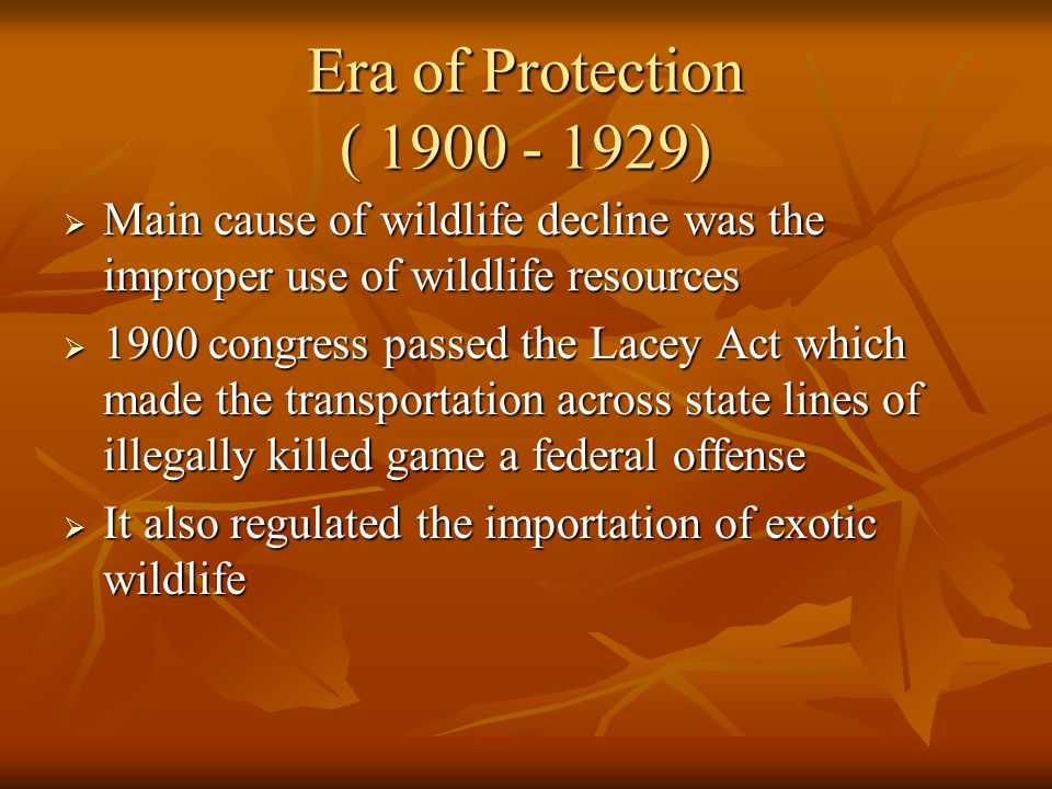 Era of Protection ( 1900 - 1929) Main cause of wildlife decline was the improper use of wildlife resources.