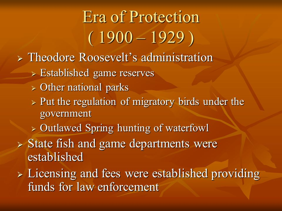 Era of Protection ( 1900 – 1929 ) Theodore Roosevelt's administration