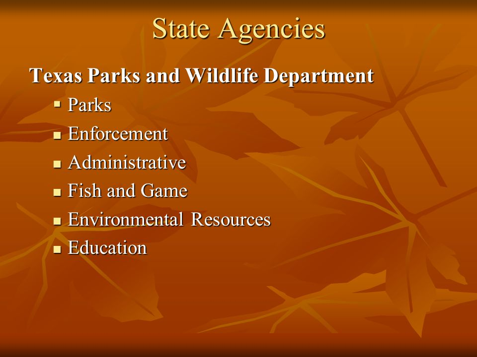 State Agencies Texas Parks and Wildlife Department Parks Enforcement