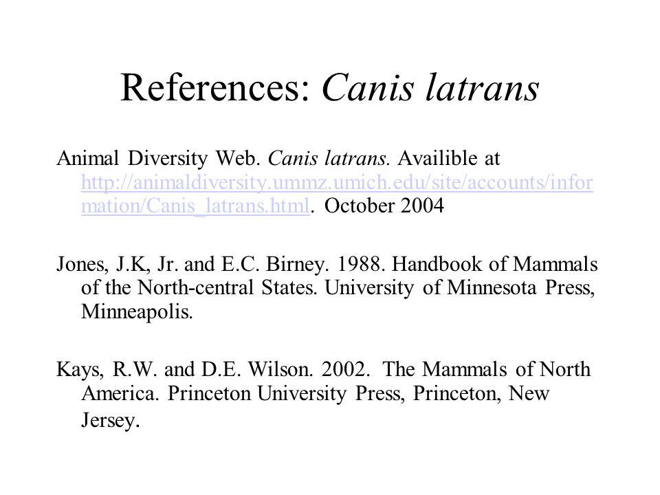 References: Canis latrans