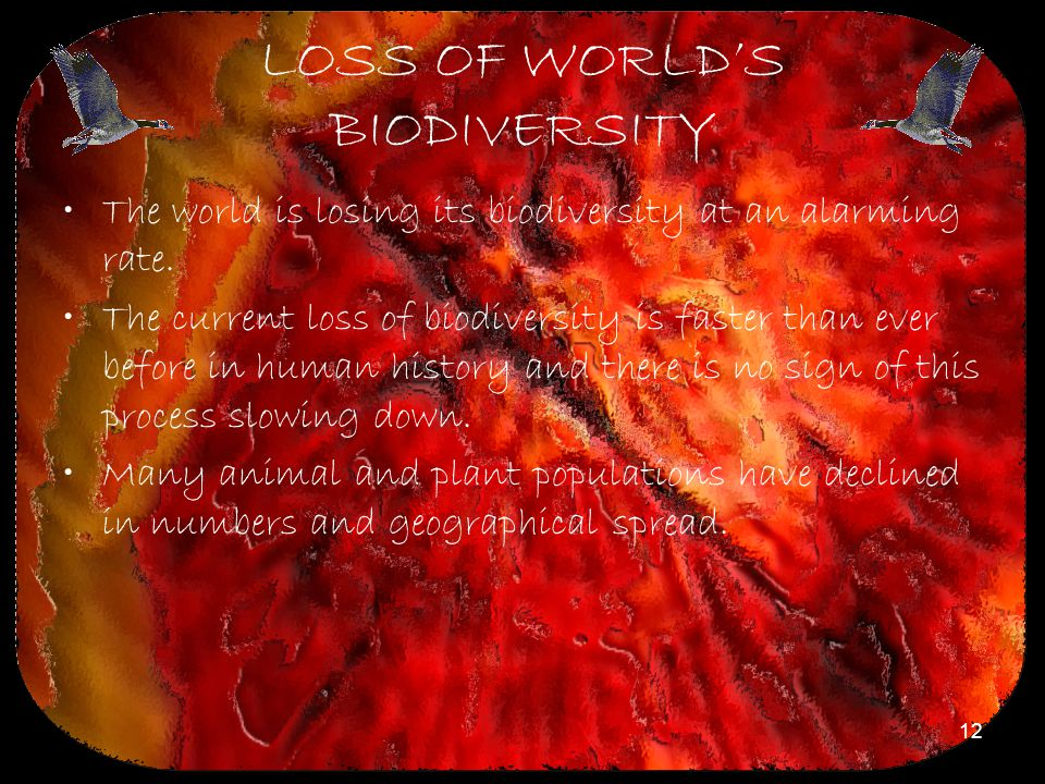 LOSS OF WORLD'S BIODIVERSITY