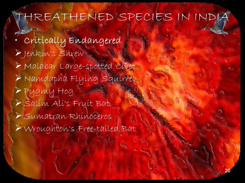 THREATHENED SPECIES IN INDIA