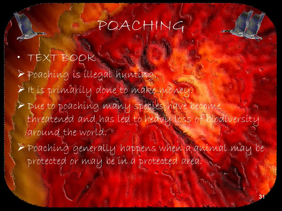 POACHING TEXT BOOK Poaching is illegal hunting.
