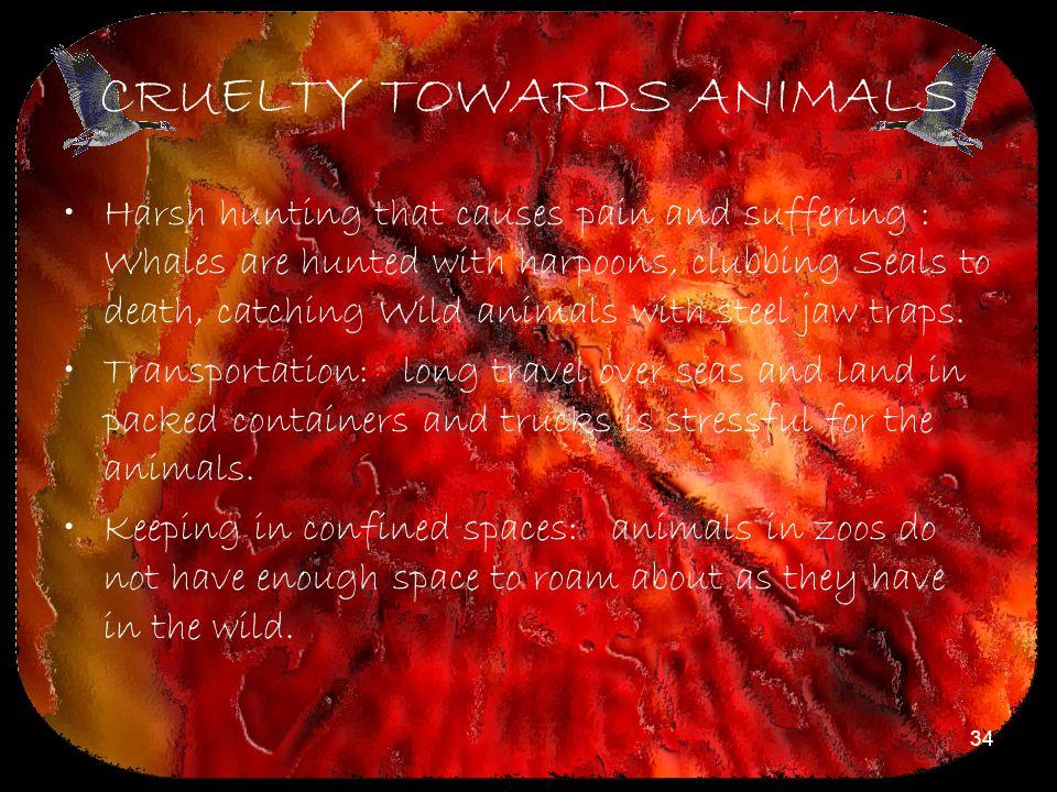 CRUELTY TOWARDS ANIMALS