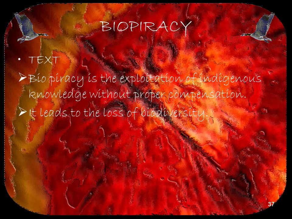 BIOPIRACY TEXT. Bio piracy is the exploitation of indigenous knowledge without proper compensation.