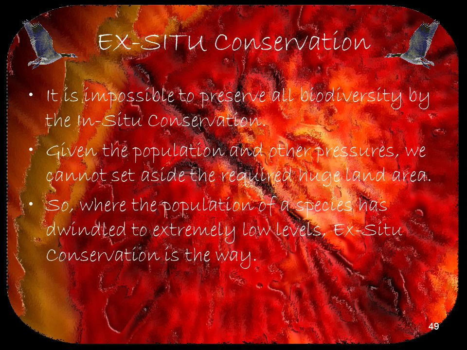 EX-SITU Conservation It is impossible to preserve all biodiversity by the In-Situ Conservation.