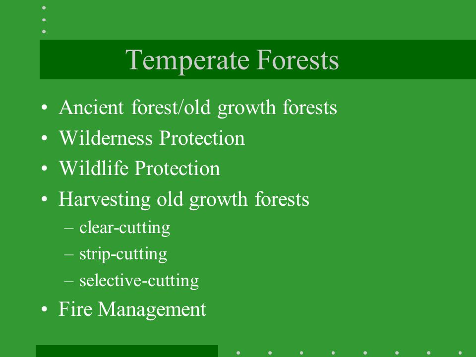 Temperate Forests Ancient forest/old growth forests