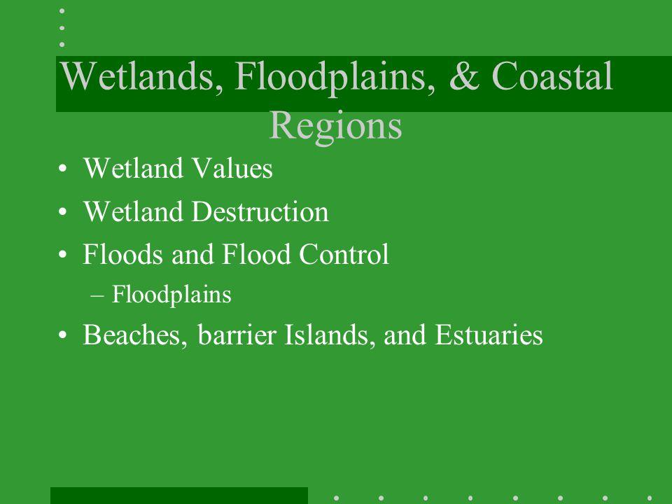 Wetlands, Floodplains, & Coastal Regions