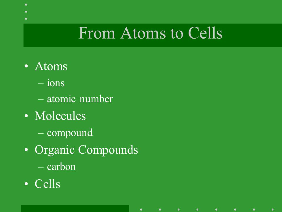 From Atoms to Cells Atoms Molecules Organic Compounds Cells ions