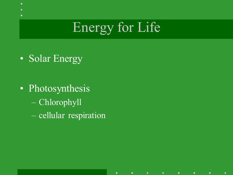 Energy for Life Solar Energy Photosynthesis Chlorophyll