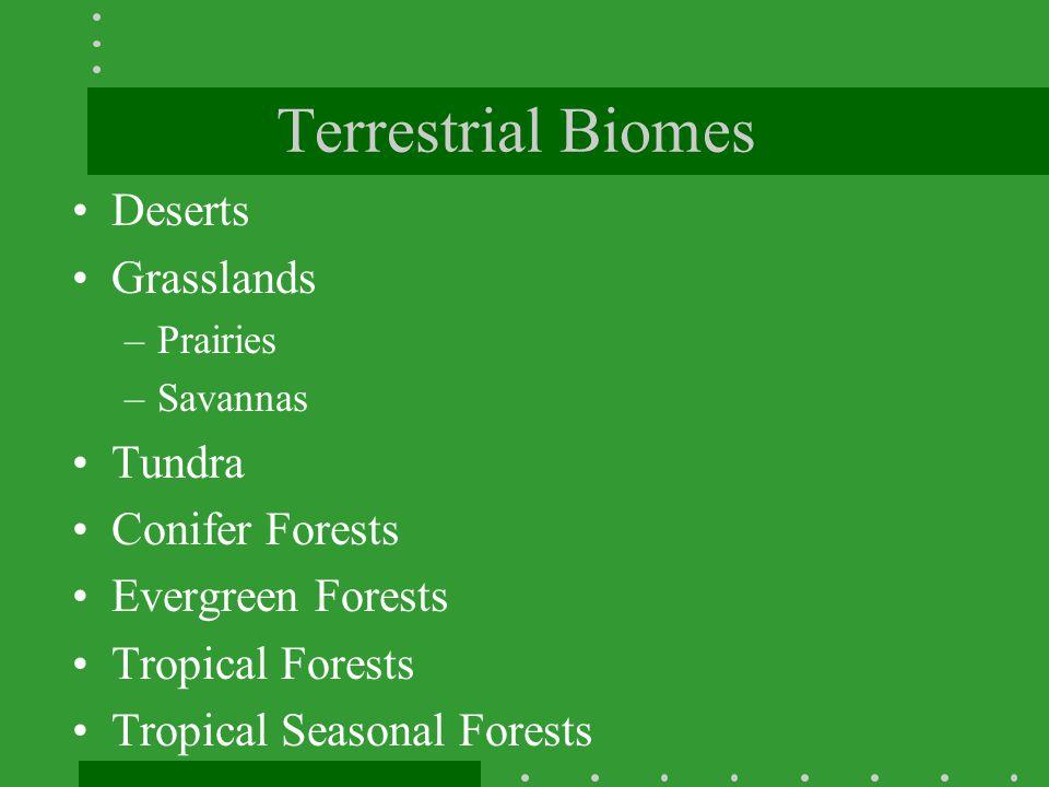 Terrestrial Biomes Deserts Grasslands Tundra Conifer Forests