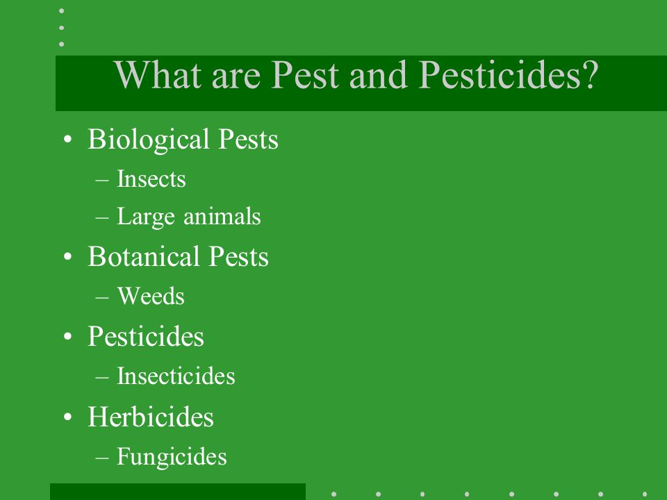 What are Pest and Pesticides