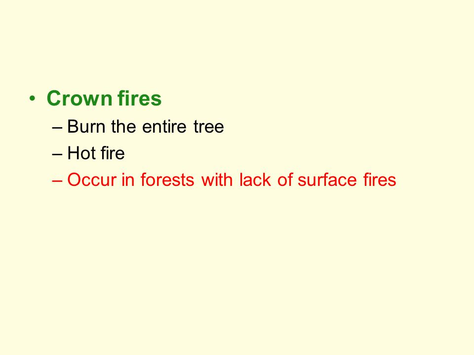Crown fires Burn the entire tree Hot fire