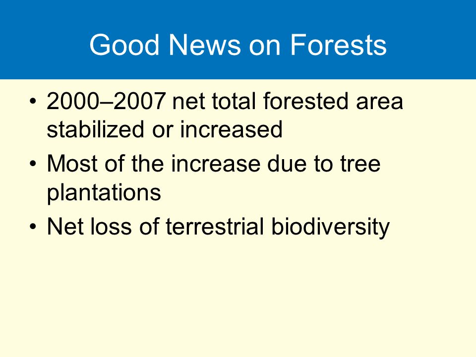 Good News on Forests 2000–2007 net total forested area stabilized or increased. Most of the increase due to tree plantations.
