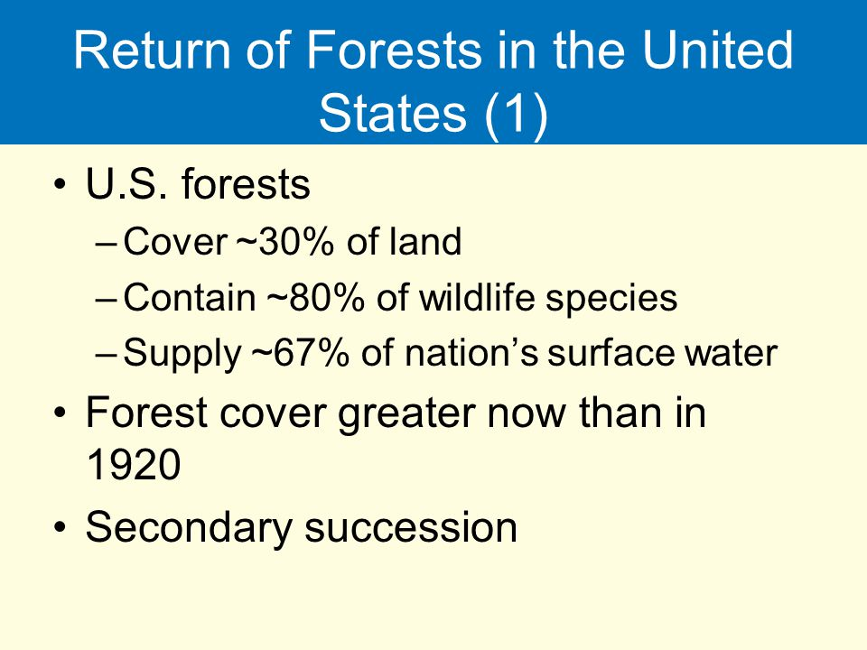 Return of Forests in the United States (1)