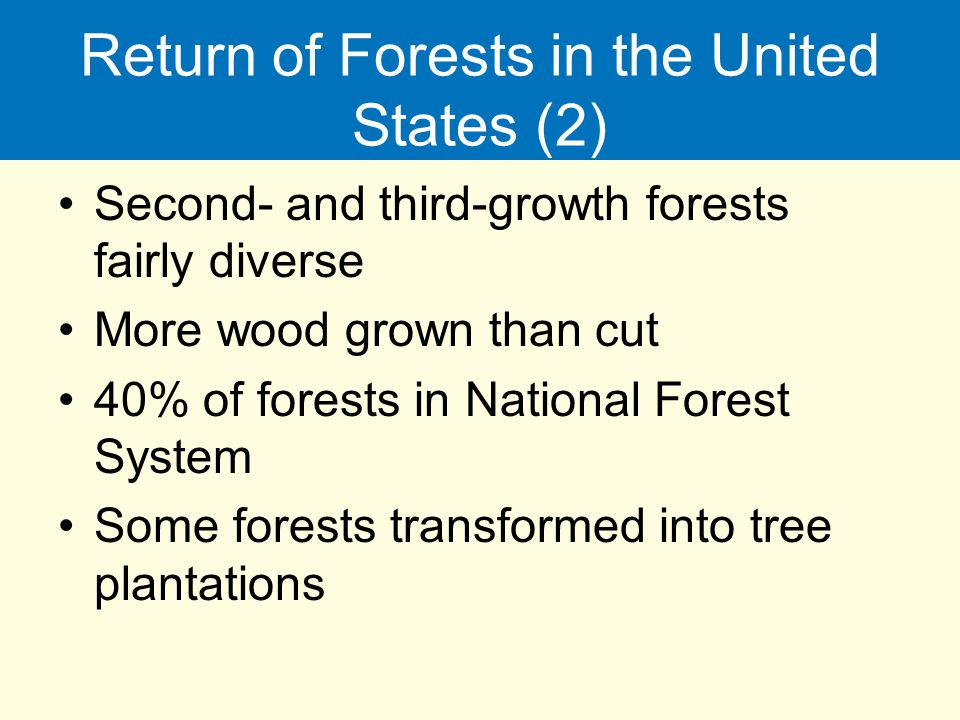 Return of Forests in the United States (2)