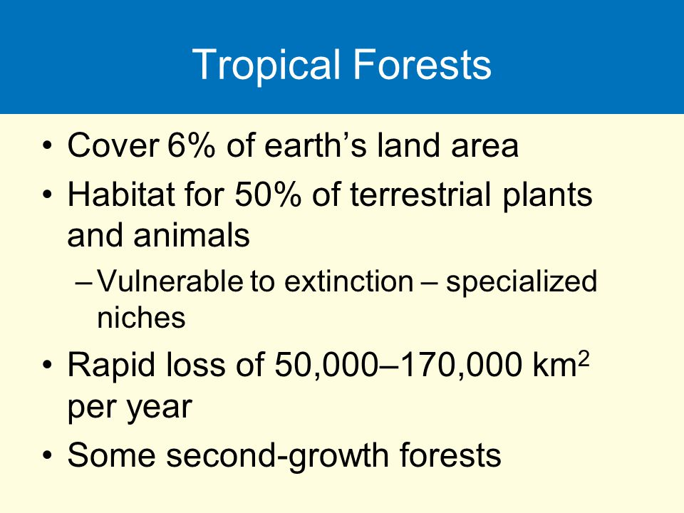 Tropical Forests Cover 6% of earth's land area