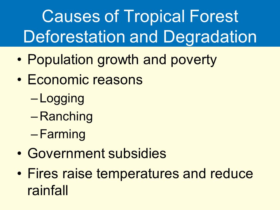 Causes of Tropical Forest Deforestation and Degradation