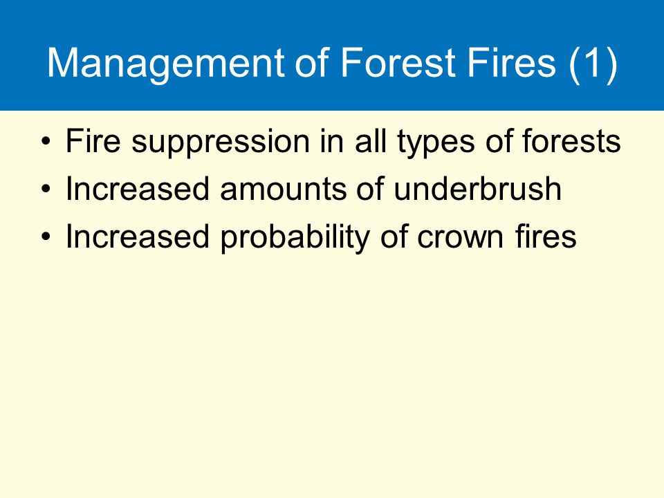 Management of Forest Fires (1)