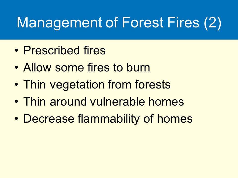 Management of Forest Fires (2)