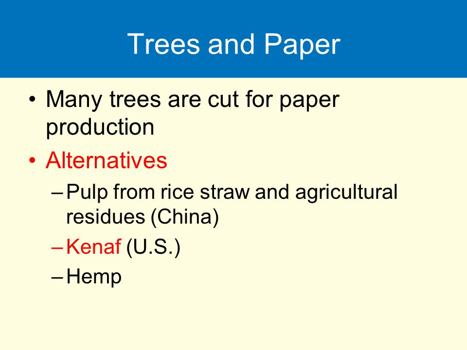 Trees and Paper Many trees are cut for paper production Alternatives