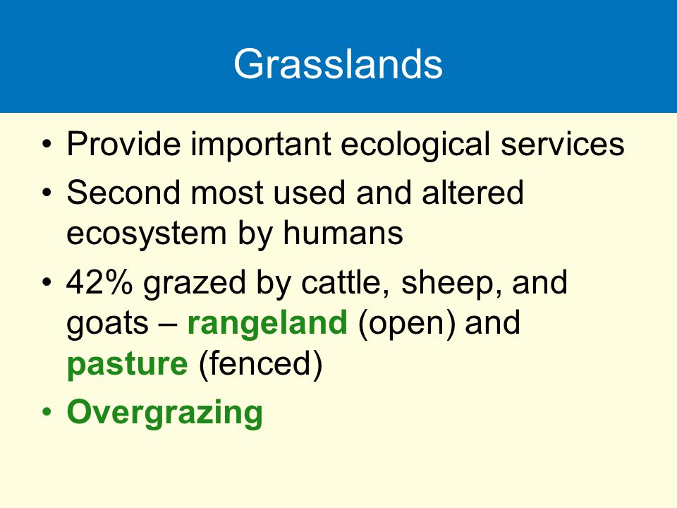 Grasslands Provide important ecological services
