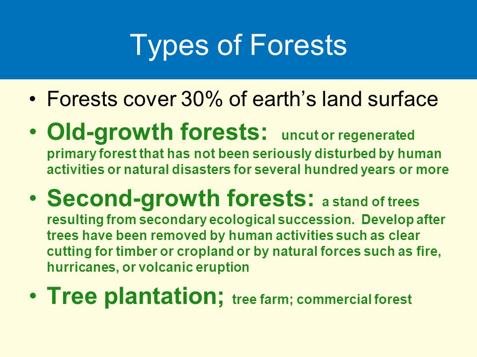Types of Forests Forests cover 30% of earth's land surface.