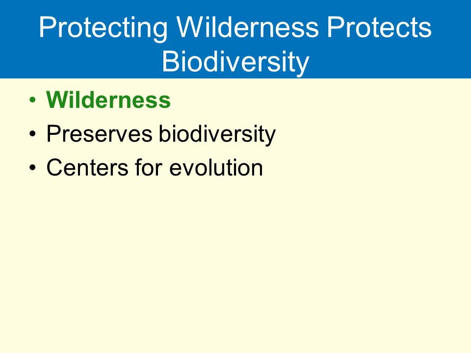 Protecting Wilderness Protects Biodiversity